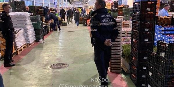 Mercasevilla continúa garantizando el suministro a mercados de abastos y tiendas minoristas de la ciudad tras registrar hoy un aumento superior al 20 % en las entradas de frutas y hortalizas y más del doble en carnes