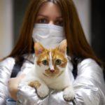 """No hay evidencias suficientes para pensar que los animales que se infectan contagien al humano"""""""