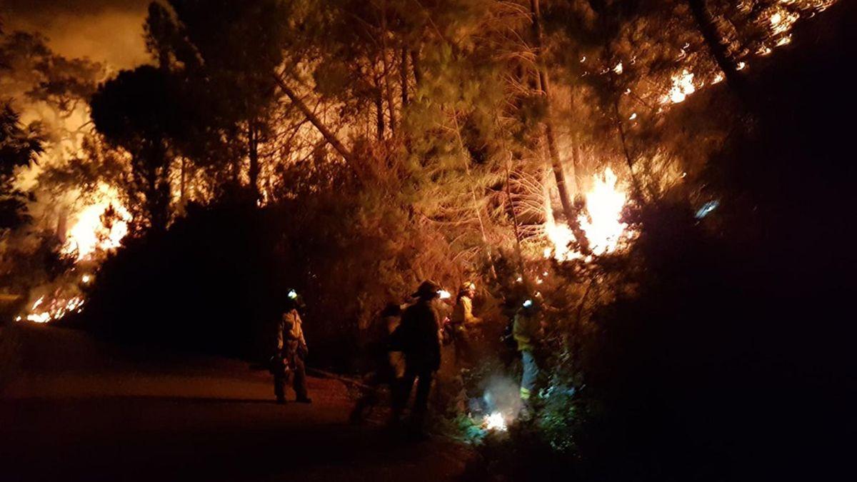 «Es un infierno»: El fuego de Sierra Bermeja avanza sin control como «un monstruo hambriento»